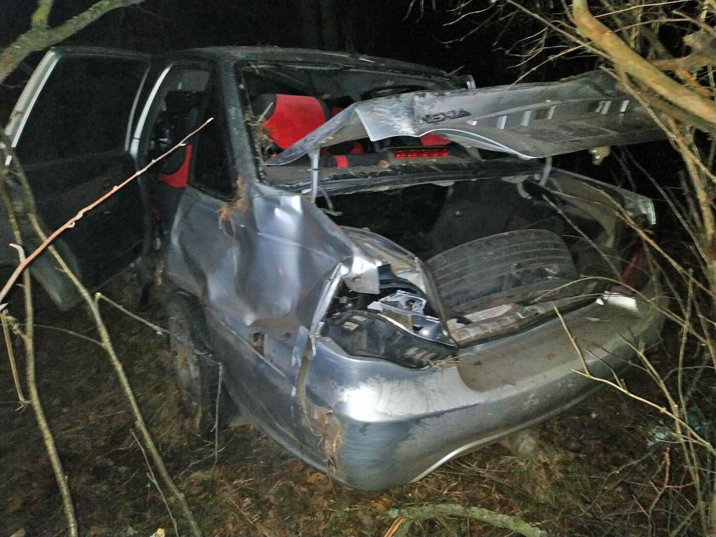 В Тамбовской области перевернулась легковушка: два человека пострадали, водитель скрылся с места ДТП, фото-1
