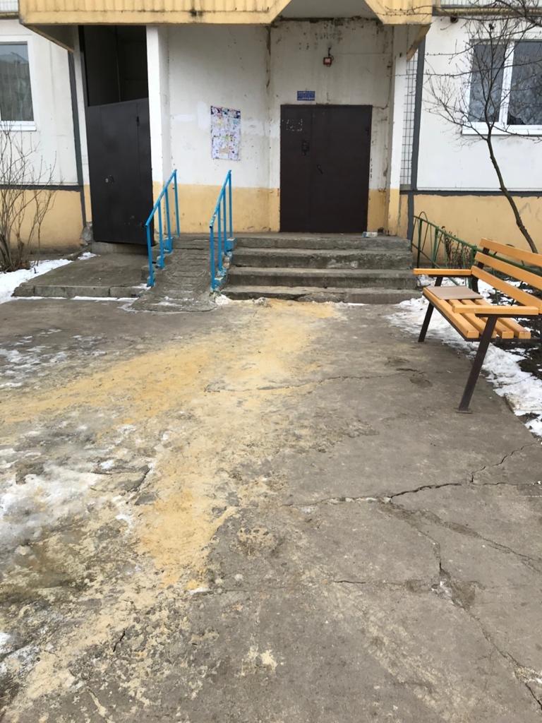 В Тамбове улицы и дворы обрабатывают реагентами от гололеда, фото-5