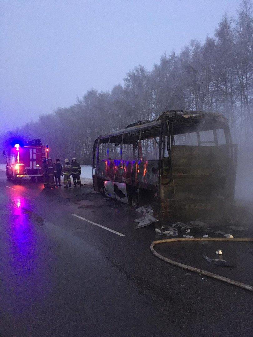 В Тамбовской области на трассе сгорел пассажирский автобус, фото-4