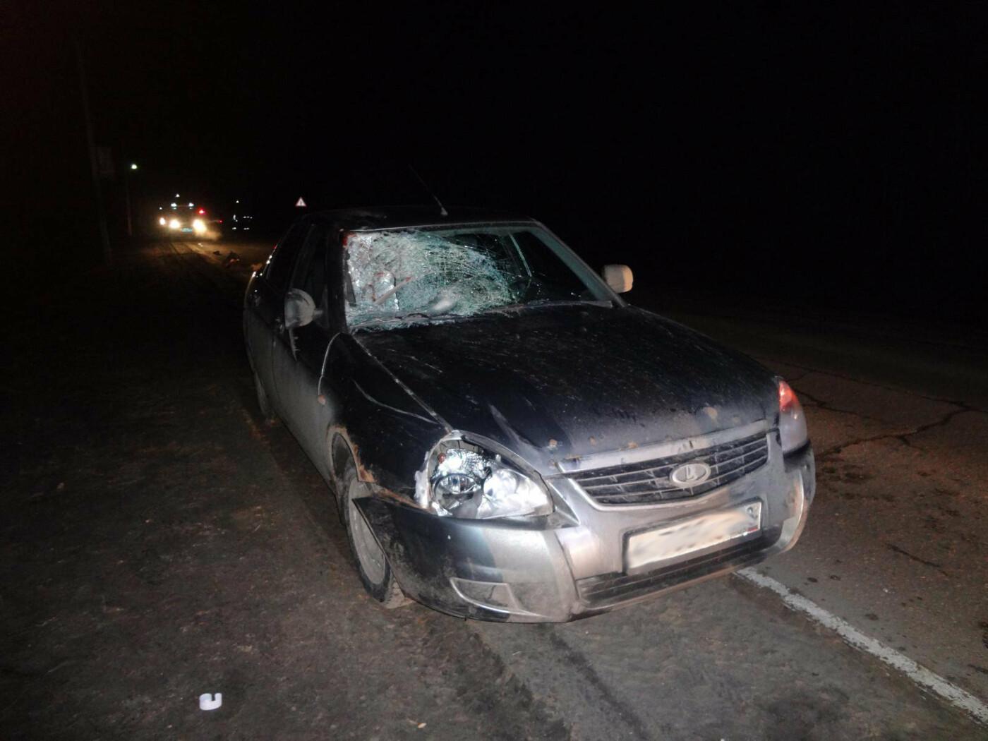 В Тамбовской области на трассе насмерть сбили пешехода, фото-1