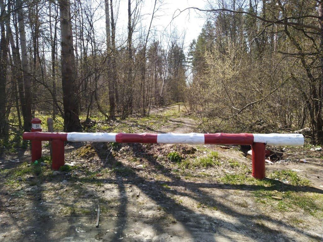 Тамбовчанам запретили посещать леса, фото-3