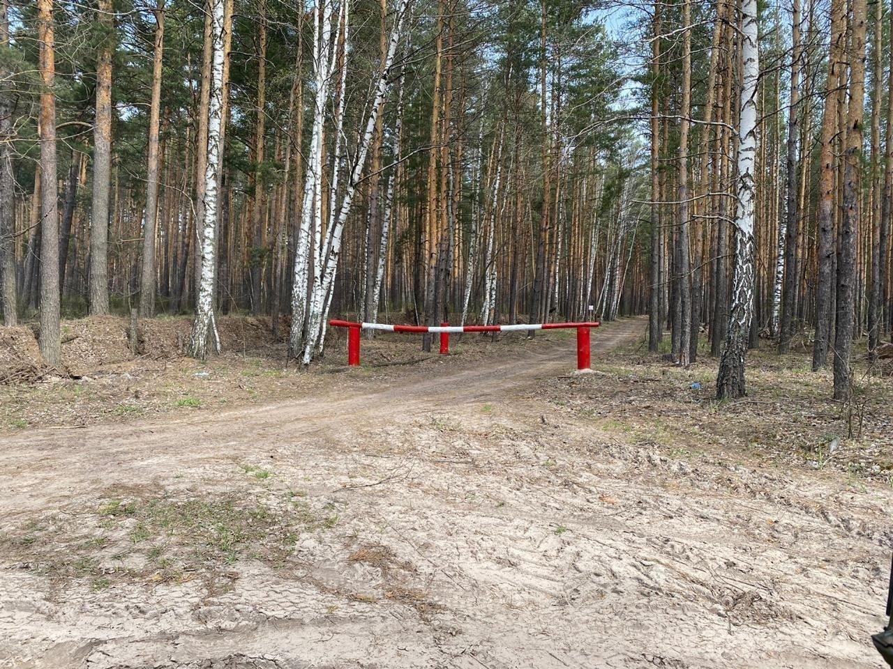 Тамбовчанам запретили посещать леса, фото-4