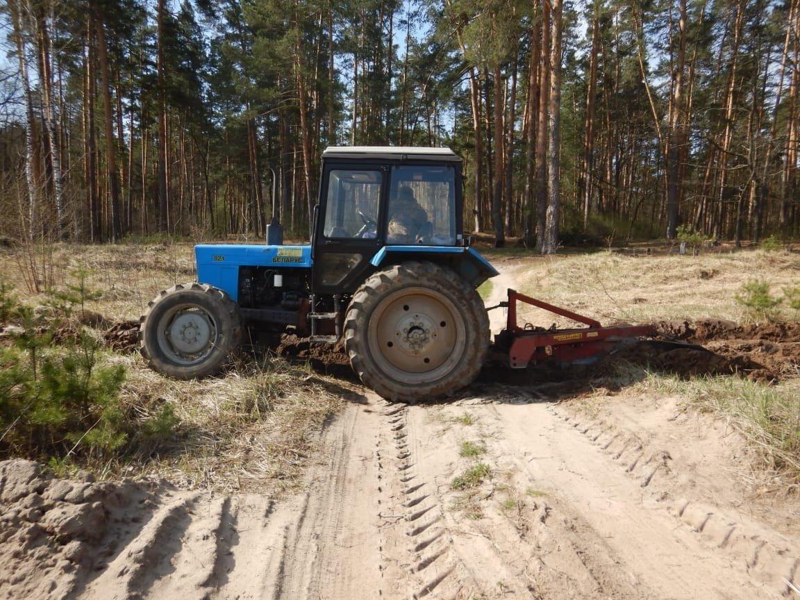 Тамбовчанам запретили посещать леса, фото-1