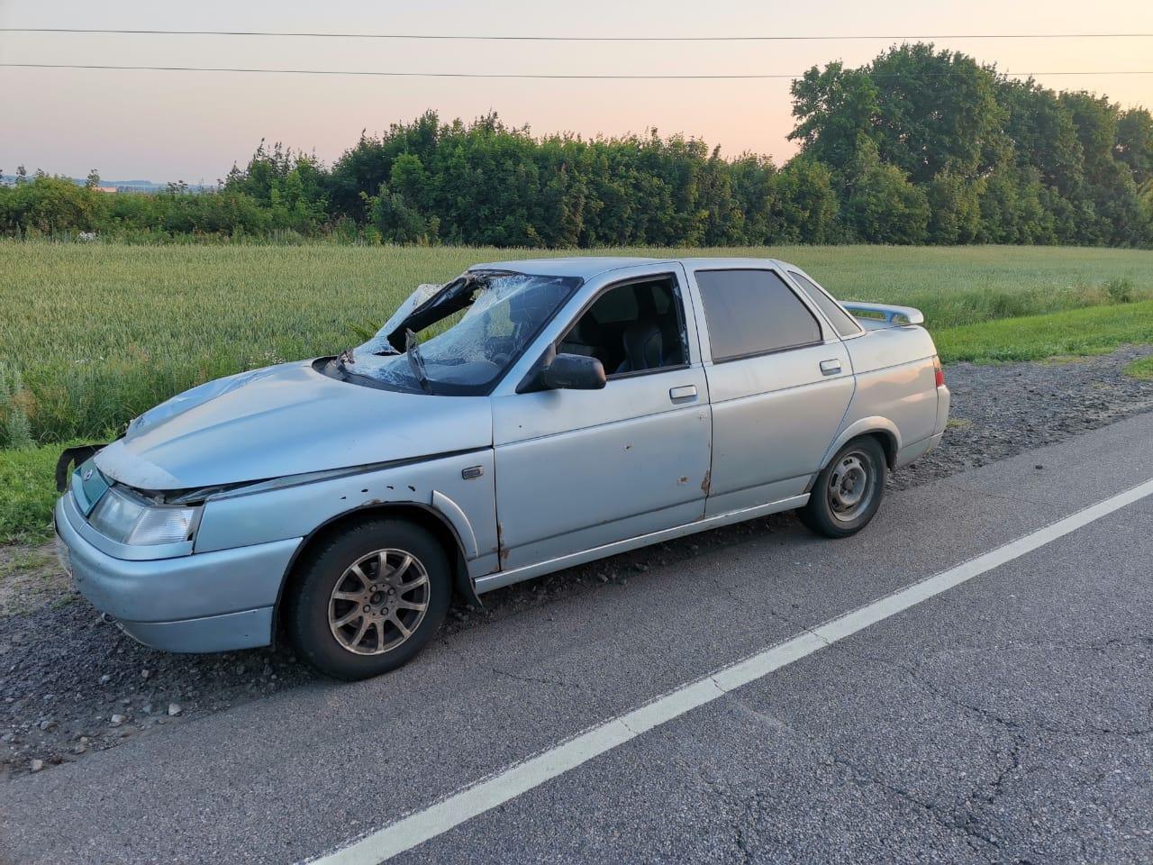 В Тамбовской области на федеральной трассе сбили пешехода, фото-1
