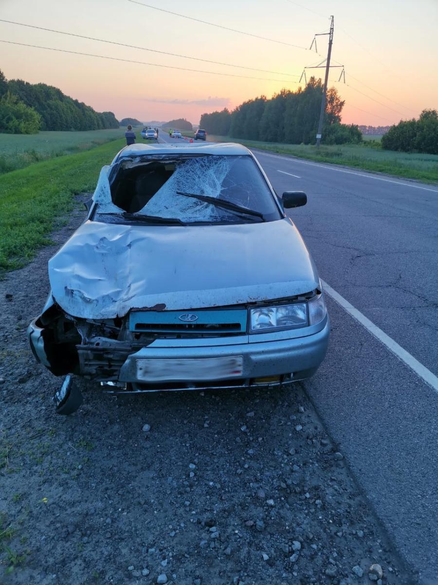 В Тамбовской области на федеральной трассе сбили пешехода, фото-2